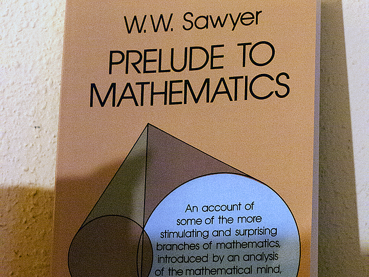 Prelude to Mathematics by W.W. Sawyer